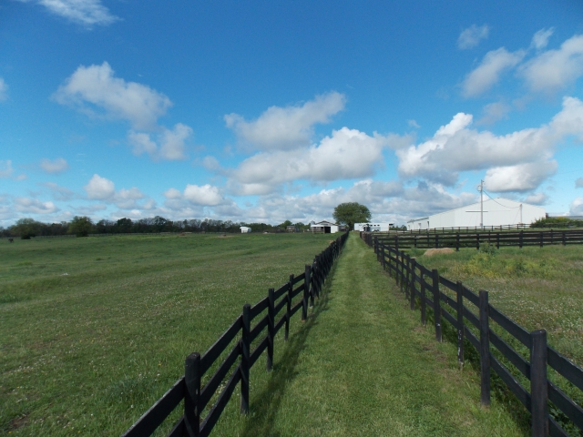 Pastures at Freedom Hill Stables