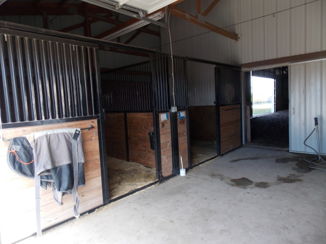 Annex Stalls at Freedom Hill Stables