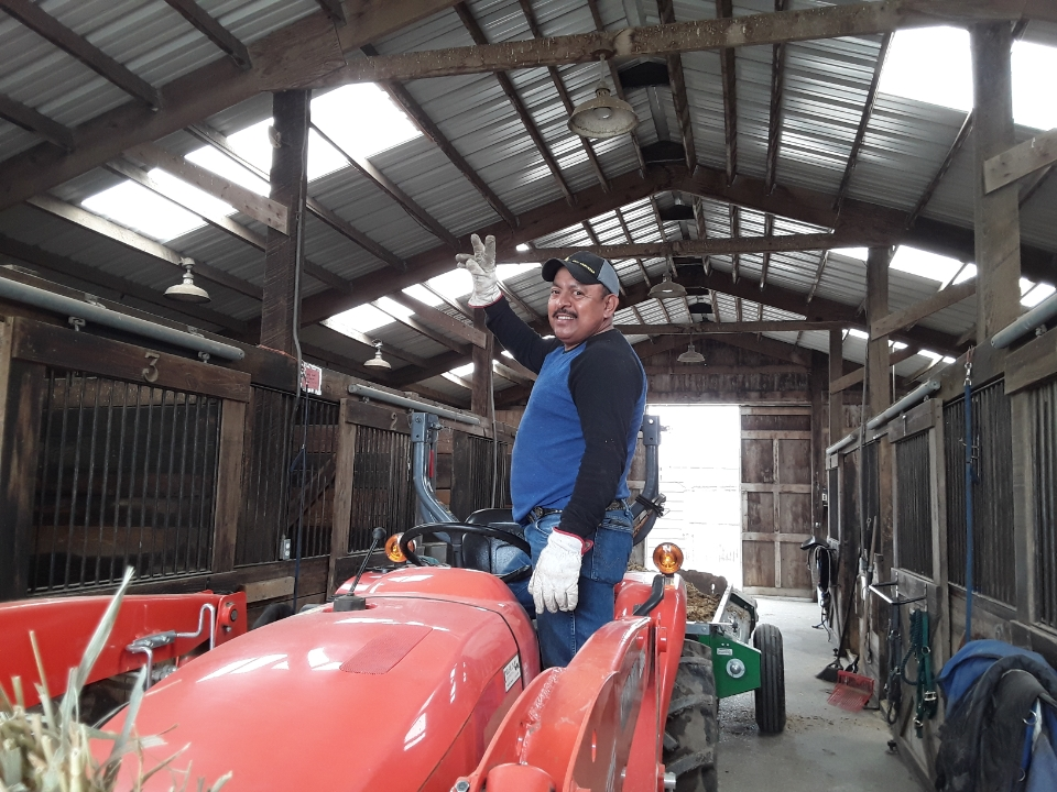 Man on tractor in barn